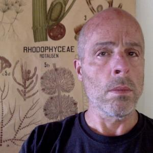 "close up of Dr. Jeff Young with illustrated poster of ""rhodophyceae"" in background"