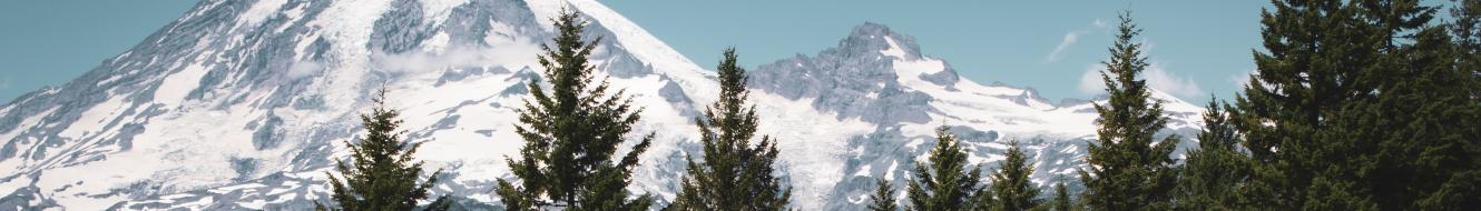 picture of mountain and trees